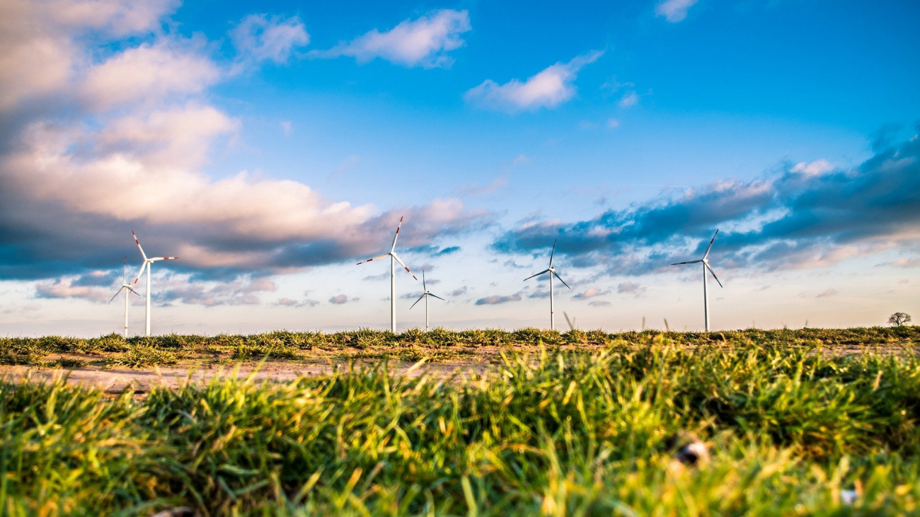 windmills-1209335_1920